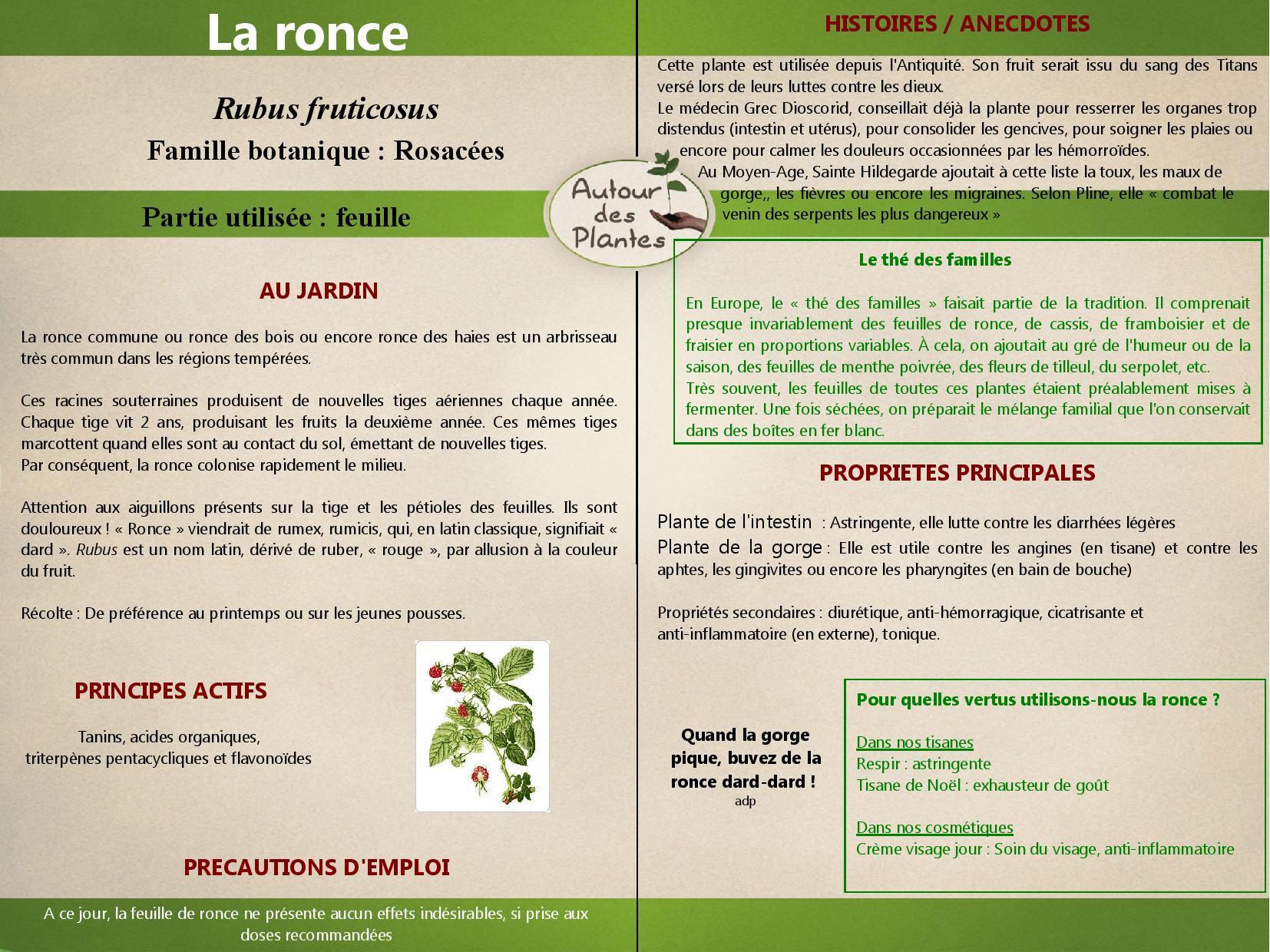 La ronce page 001