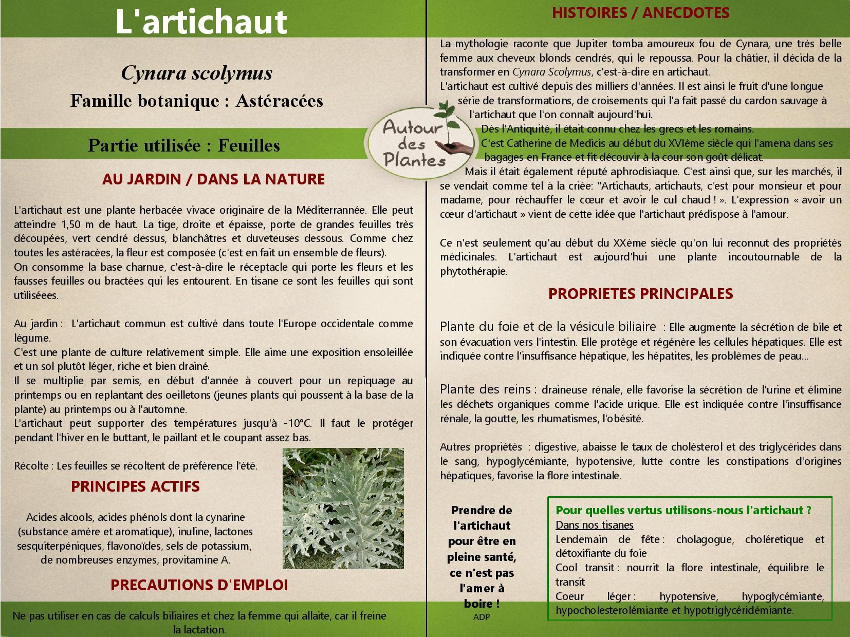 Lartichaut page 001