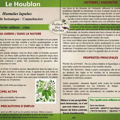 Le houblon page 001