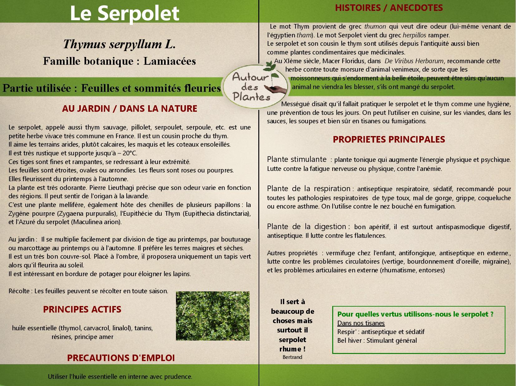Le serpolet page 001