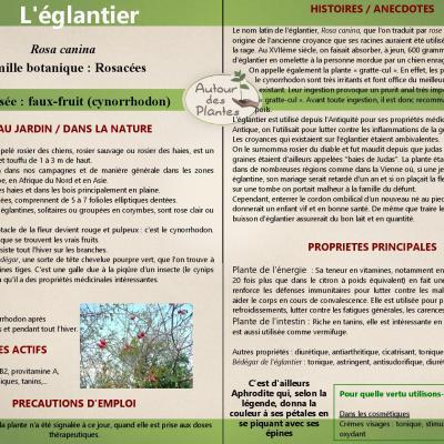 Leglantier page 001