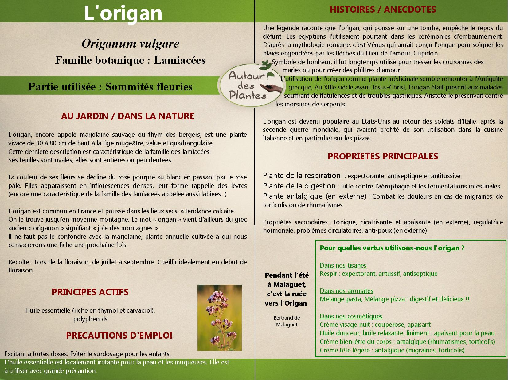 Lorigan page 001